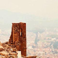 Pergamon User Photo