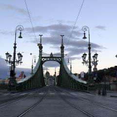 自由橋用戶圖片