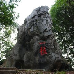 Fujian Linyin Stone Forest User Photo