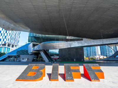 BIFF 광장