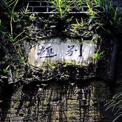 Yipu Garden User Photo