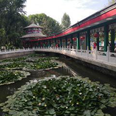 런민 공원 여행 사진