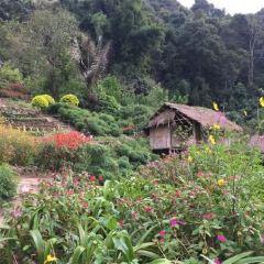 도이뿌이 몽족마을 여행 사진