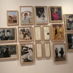 Musee Yves Saint Laurent Marrakech User Photo