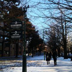 Hokkaido University User Photo