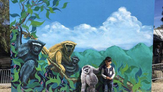 Gibbon Conservation Center