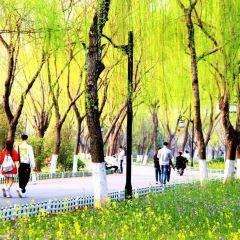 Aishan User Photo