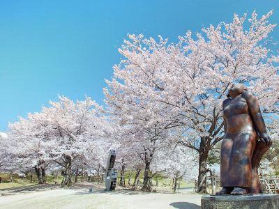 櫻之丘公園