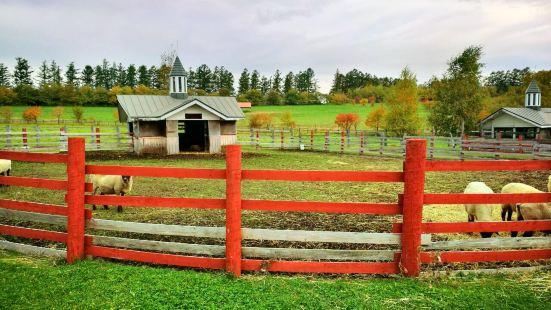 Farms Chiyoda