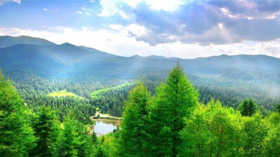 冶力關國家森林公園