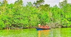 锡邦河-民丹岛