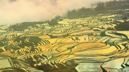 Duoyishu Terraced Field
