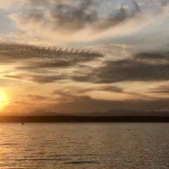 Negombo Lagoon User Photo