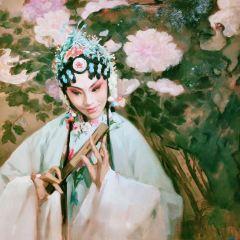 南昌美術館用戶圖片