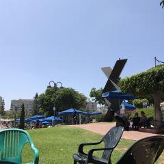 Tel Aviv University User Photo