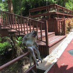 Tasek Lama Recreational Park User Photo