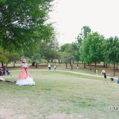 Pioneer Plaza用戶圖片