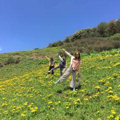 주딩산 여행 사진