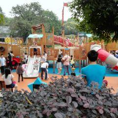 Jishan Olive Park User Photo