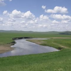 金帳汗蒙古部落用戶圖片