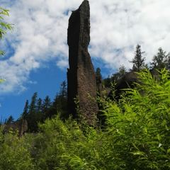 Canyon Pumice Forest User Photo
