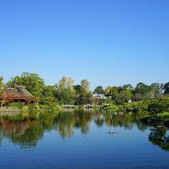 스이젠지 조주엔 공원 여행 사진