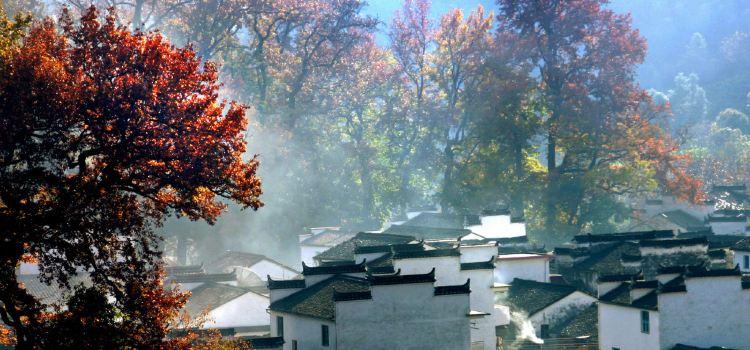 Wuyuan Scenic Area3