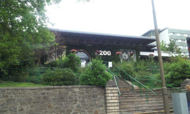 RZSS 에든버러 동물원