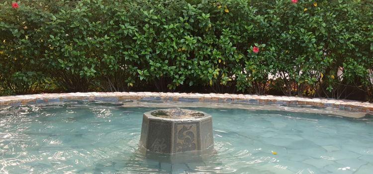 陽西鹹水礦溫泉