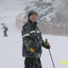 지산 포레스트 리조트 스키장 여행 사진