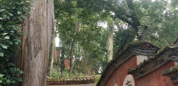 Yuxi Tonghai Xiushan Historical Cultural Park3