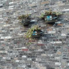 Dongguan Street Historical District User Photo