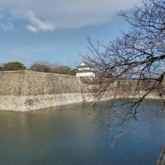 The Main Tower of Osaka Castle User Photo