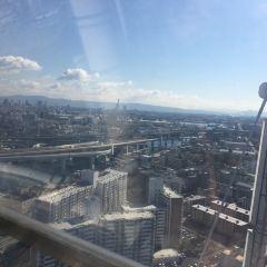 Tempozan Giant Ferris Wheel User Photo
