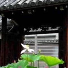 大圓寺用戶圖片