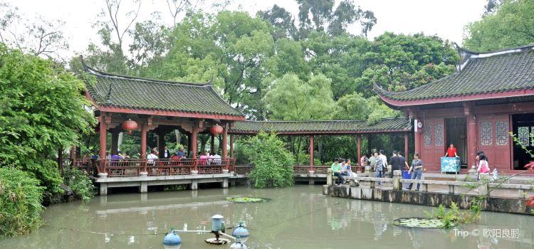 西湖公園1