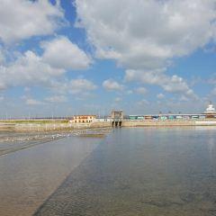 沙柳河景區用戶圖片