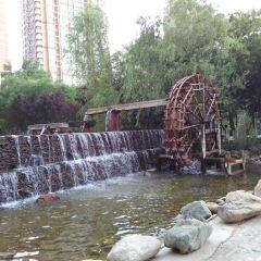 水車博覽園用戶圖片