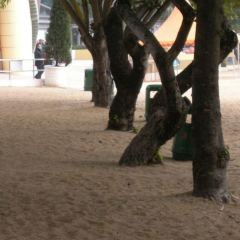 Repulse Bay User Photo