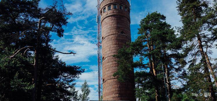 Pyynikki Observation Tower3