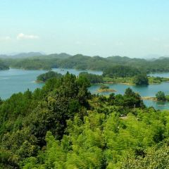 Meifeng Island User Photo