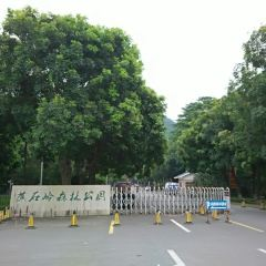 Jiaoshiling Forest Park User Photo