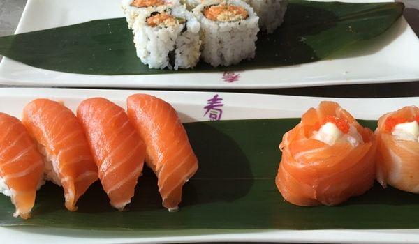 Spring Sushi2
