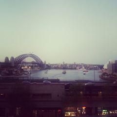 Cafe Sydney User Photo