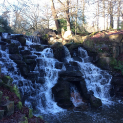 Virginia Water User Photo