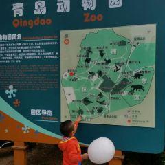 青島動物園用戶圖片