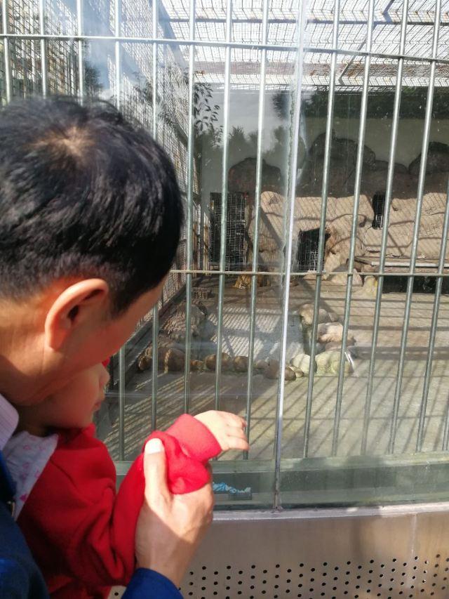 칭다오(청도) 동물원
