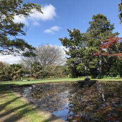 Mona Vale User Photo