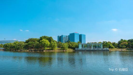 Dongfang Park