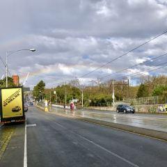 City Circle Tram User Photo